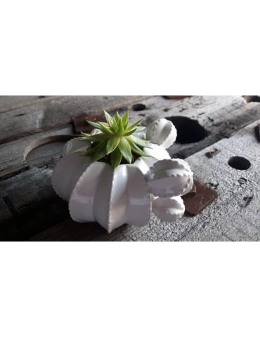Kakteen Topf Keramik Porzellan weiß White klein 12758