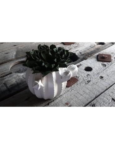 Kakteen Topf Keramik Porzellan weiß White groß 12757